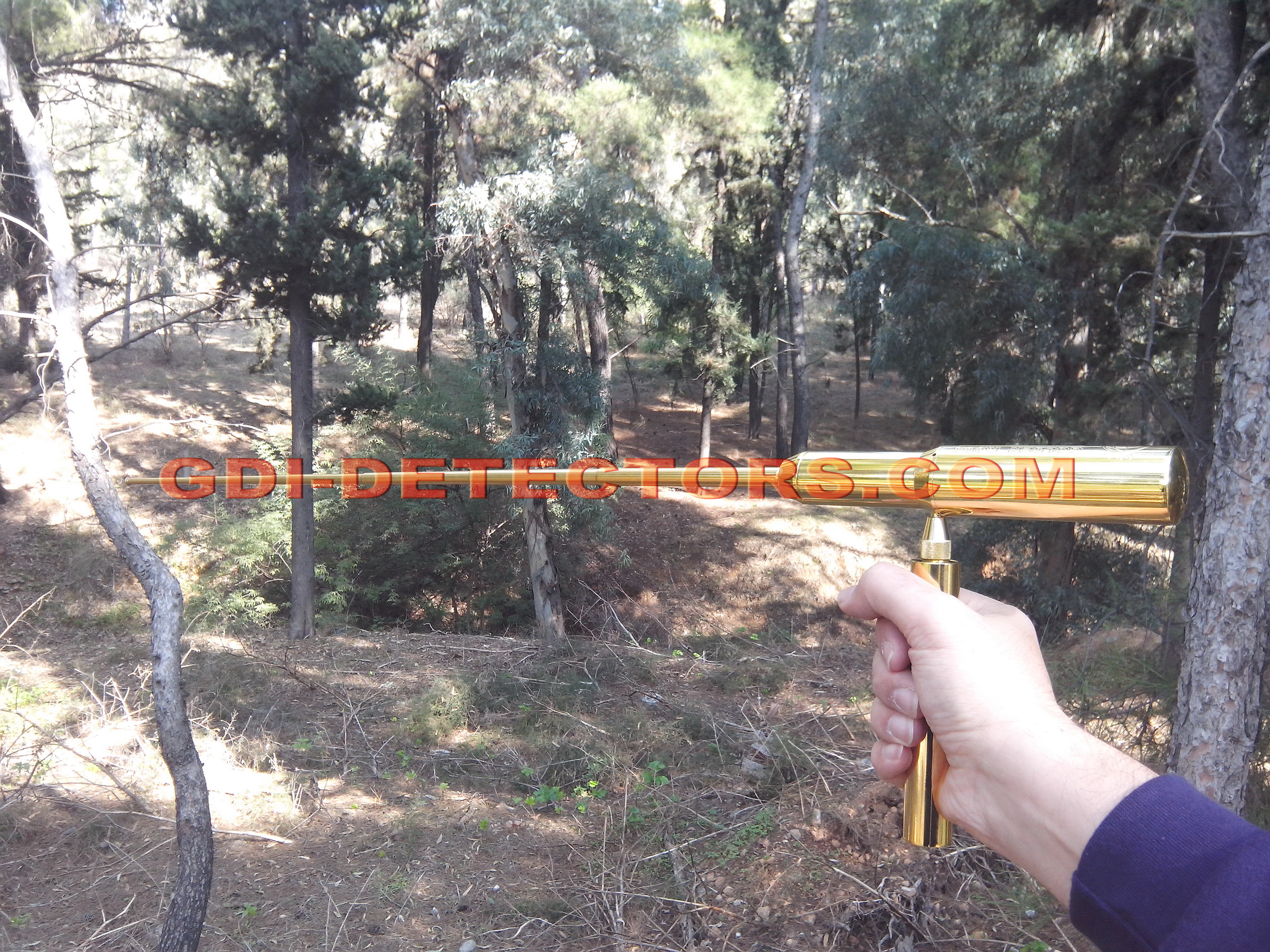 ionic gold long range locator rod nemesis